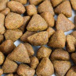 Croquettes françaises poulet et sans céréales pour chiens