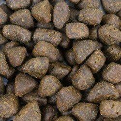 Croquettes naturelles Saumon d'Ecosse pour chien