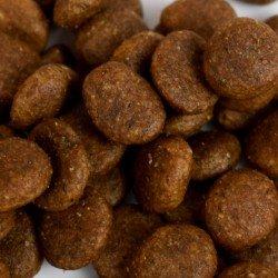 Croquettes françaises pour chiot - Poulet et saumon